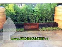 tuinaanleg-bilthoven-cortenstaal-bamboe-door-groenkreatief-nl-achterveld-250