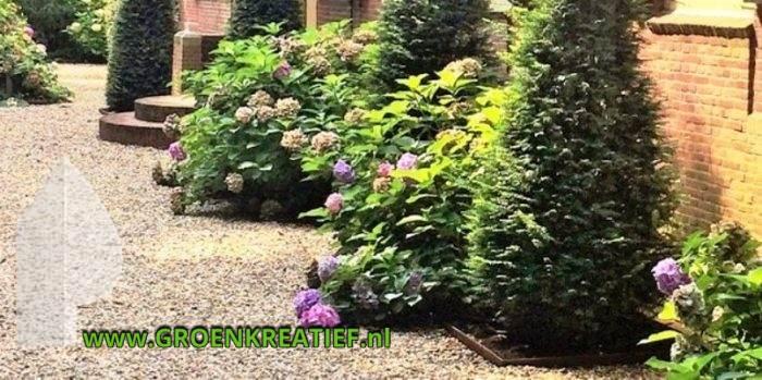 tuinaanleg-tuinonderhoud-huizen-cortenstaal-borderrand-groenkreatief-nl-250