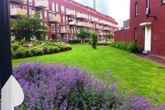 Tuinonderhoud-binnentuin-voor-VvE-Utrecht-door-GROENKREATIEF.nl-te-Achterveld-Utrechtse-heuvelrug-Vallei-t-Gooi-Gelderland-Midden-Nederland-Amersfoort-Bilthoven-Huizen-Soest-Huissen-Laren