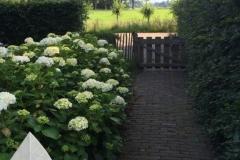 Engelse-tuin-6