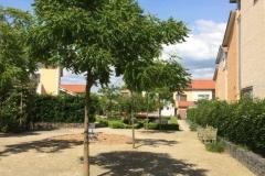 Gemeenschappelijke-tuin-Utrecht-1
