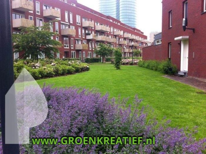 Binnentuin Utrecht (4)