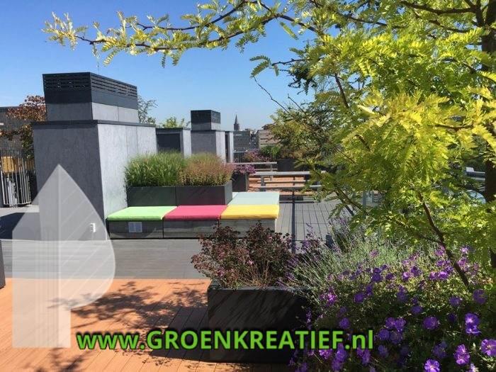 tuinaanleg-en-daktuinonderhoud-utrecht-door-groenkreatief-nl-te-achterveld-midden-nederland-2-u18